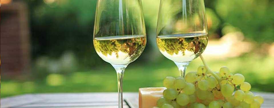 vin-terroire